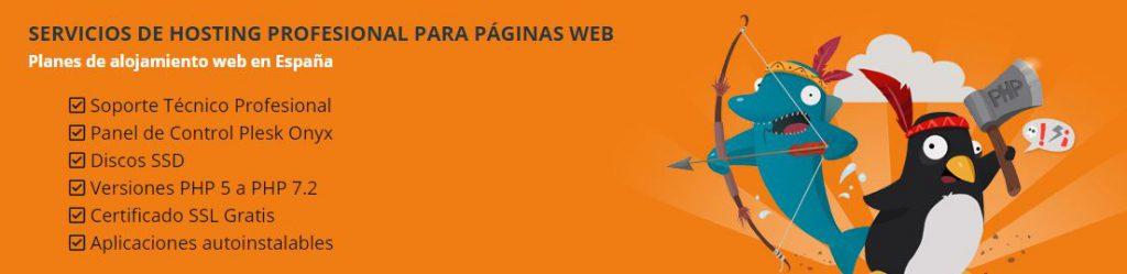 servicio de hosting profesional