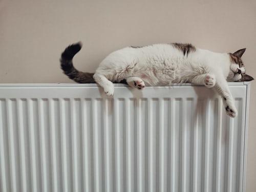 Gasoil de calefacción
